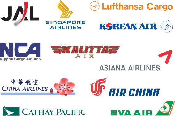 major-support-airlines